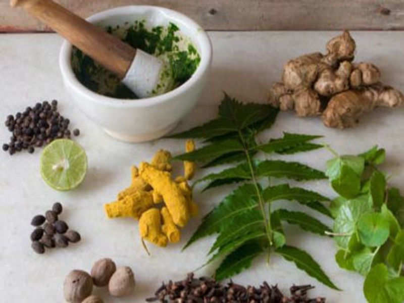 7 Herbs Used in the Ayurveda Medicine System