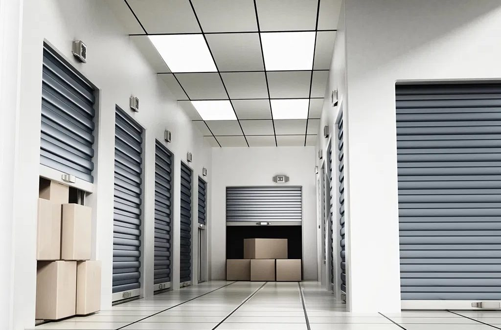 Items That Need A Climate Controlled Storage