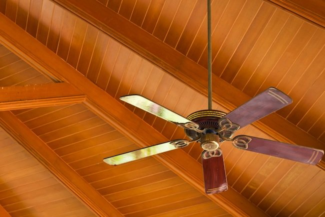ALL YOU NEED TO KNOW ABOUT CEILING FANS